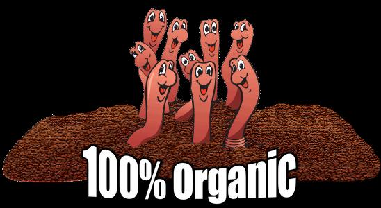 100% Organic Soakaway Worms