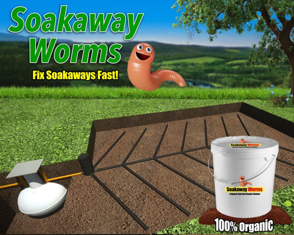 Soakaway Worms